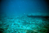 Adriatic sea underwater view beneath surface — Stock Photo
