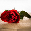 Red rose on wooden background — Stock Photo