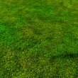 Soccer ball rolling on green grass HD — Stock Video #46176919