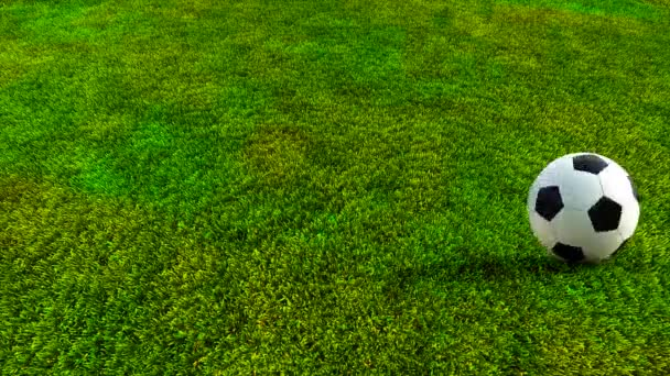 Soccer ball rolling on green grass HD — Stock Video ... Rolling Soccer Ball Picture