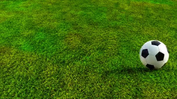 Soccer ball rolling on green grass HD — Stock Video ... Rolling Soccer Ball