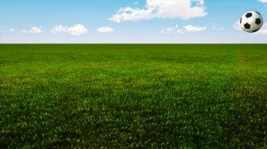Soccer ball bouncing on green grass HD — Стоковое видео