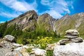 Stone figure in the Alps — Stockfoto