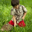 Foto Stock: Boy fed rabbits in garden