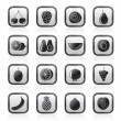 Different kind of fruit and  icons - Stock Vector