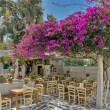 Stock Photo: Restaurant with flowers on island of Mykonos