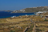 Landscape, island of Mykonos — Stock Photo