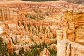 Bryce Canyon Grandeur — Stock Photo