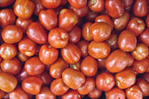 Red Roma Tomatoes on Display — Stock Photo