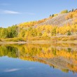 Fall Foliage Reflections — Stock Photo