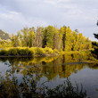 Stock Photo: Jackson Hole Waterscape
