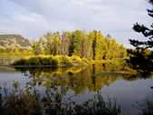 Jackson Hole Waterscape — Stock Photo