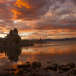 On Golden Pond — Stock Photo #13517210