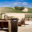 California Winery Vista — Stock Photo