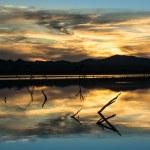 Desert Wetlands Sunset — Stock Photo #20061347