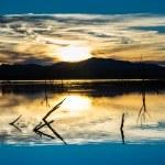 Desert Wetlands Sunset — Stock Photo #20061407