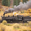 Постер, плакат: Rocky Mountain Train Adventure