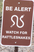 Danger Rattlesnakes — Stock Photo