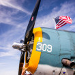 Grumman TBF Avenger — Stock Photo