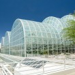Stock Photo: Biosphere 2 Domed Laboratories
