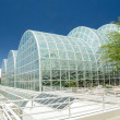 Biosphere 2 Domed Laboratories — Stock Photo