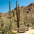 Desert Picnic Place — Stock Photo