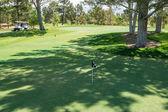 Vert de pratique ombragé dans le désert — Photo