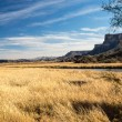 Desert Wetlands Vista — Stock Photo