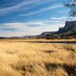 Desert Wetlands Vista — Stock Photo #40263759