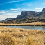Desert Wildlife Refuge — Stock Photo #40438301