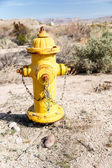 Desert Fire Hydrant — Stock Photo