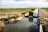 California Irrigation Ditch — Stock Photo