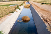 Irrigation Ditch with Desert Tumbleweeds — Stock Photo
