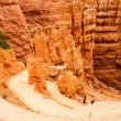 Navajo Loop Trail in Bryce Canyon — Stock Photo #51053455