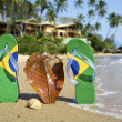 Brazilian Flipflop — Stock Photo