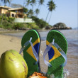 Brazilian Flipflop - Stock Photo