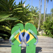 Brazilian Flipflop Havaianas — Stock Photo