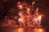 赤の花火 — Stock fotografie