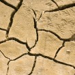 Cracks in dry soil — Stock Photo #12826203