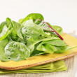 Stock Photo: Swiss chard leaves