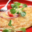 Egg omelet — Stock Photo
