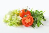 Ledový salát, rukola a rajčaty — Stock fotografie
