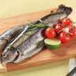 Fresh trout — Stockfoto #24253465