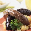 Blood sausage and white pudding - Stock Photo