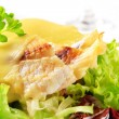 Stock Photo: Cheese topped fish fillets with salad