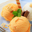 Ice cream with wafer rolls — Stockfoto