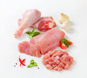 Raw turkey meats and cuts — Stock Photo