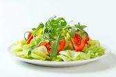 Osvěžující salát — Stock fotografie