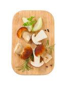 Świeże grzyby jadalne — Zdjęcie stockowe