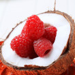 Coconut and raspberries — Stockfoto